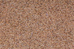 färgrika pebbles Royaltyfri Foto