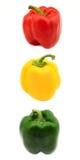 färgrika peppar för klocka royaltyfri bild