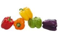 färgrika peppar för klocka arkivbilder