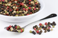 färgrika peppercorns Royaltyfria Bilder