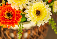Färgrika plast- blommor Royaltyfri Fotografi