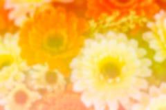 Färgrika plast- blommor Royaltyfria Bilder