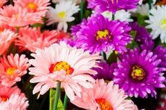 Färgrika plast- blommor Arkivfoto