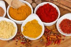 Färgrika plattor av kryddor på trätabellen Royaltyfri Foto