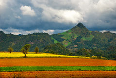 Färgrika plogade fält i Burma Arkivfoto