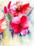 Färgrika röda blommor Royaltyfria Foton