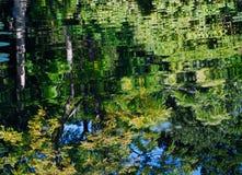 färgrika reflexioner Royaltyfri Fotografi