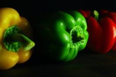 färgrika söta peppar Royaltyfria Foton