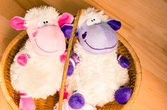 Färgrika sheeps Arkivbilder