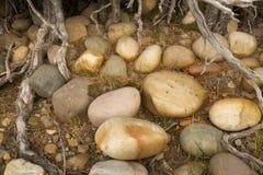 Färgrika släta stenar på kusten, Jackson Lake, Teton medborgare P Arkivfoton