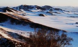 Färgrika snöfält Royaltyfri Bild