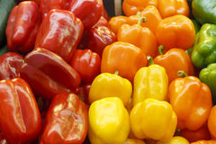 Färgrika spansk peppar i en bondemarknad Royaltyfri Fotografi