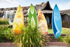 färgrika surfingbrädor Arkivfoton