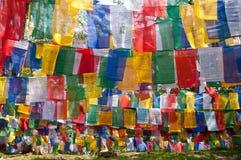 Färgrika tibetana prästflaggor Arkivbild