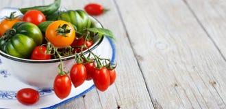 Färgrika tomater i en bunke Fotografering för Bildbyråer