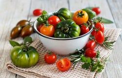Färgrika tomater i en bunke Arkivfoton