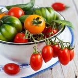 Färgrika tomater i en bunke Arkivbild