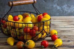 Färgrika tomater i korgen Royaltyfri Foto