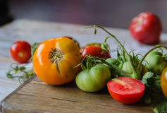 Färgrika tomater, röda tomater, gula tomater, orange tomater, gröna tomater Tappningträbakgrund Fotografering för Bildbyråer