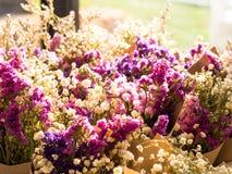 Färgrika torkade blommor som är suddiga Royaltyfria Bilder