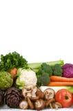 färgrika trädgårds- grönsaker Arkivbild