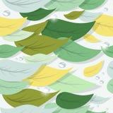 Färgrika trädsida- och vattendroppar Arkivbild