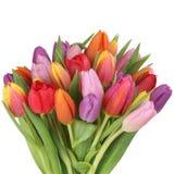 Färgrika tulpan blommar buketten i vår- eller moders dagisolat arkivbild