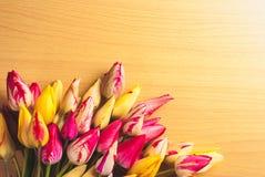 Färgrika tulpan på träbakgrund Arkivfoto
