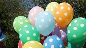 Färgrika uppblåsta heliumballongprickar i packen flyger av träden stock video