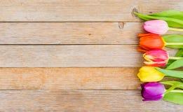 Färgrika vårblommor, gräns av nya tulpan kort för för moderdag eller födelsedagför hälsningen Royaltyfri Fotografi