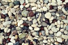 Färgrika våta havsstenar Royaltyfri Fotografi