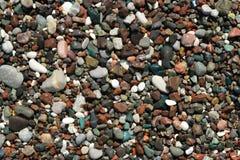 Färgrika våta havsstenar Royaltyfri Bild