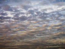 Färgrika vadderade moln i afton fotografering för bildbyråer