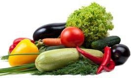 färgrika variationsgrönsaker arkivbild