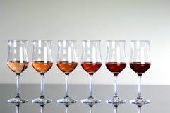 Färgrika wineexponeringsglas Fotografering för Bildbyråer