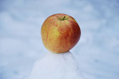 Färgrikt äpple på kullen av snö Arkivbilder