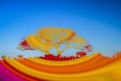 Färgrikt abstrakt landskap Arkivfoto