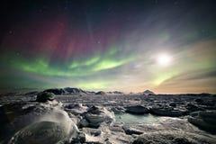 Färgrikt arktiskt vinterlandskap - fryste fjord & nordliga ljus Arkivfoto