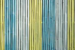 Färgrikt av bambustaketet Arkivbilder