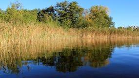 Färgrikt av den naturliga sjön under sommar och höst royaltyfri foto