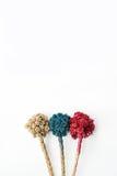 Färgrikt av torra blommor Royaltyfria Foton