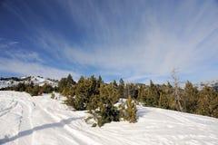 Färgrikt berglandskap - berg som täckas med snö och som är bevuxna med granträd, Vallnord, furstendöme av Andorra, Europa arkivfoton