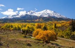Färgrikt Colorado berg i höst Royaltyfri Foto