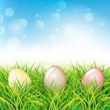 färgrikt easter ägggräs skyen för showen för växter för rörelse för den förfallna för fältet för blueoklarhetsdagen ligganden för vektor illustrationer