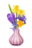 Färgrikt fjädra blommor i en vase Arkivbild