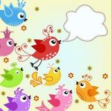 Färgrikt flygfåglar Arkivfoto