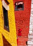 färgrikt ganden kloster tibet Royaltyfria Foton