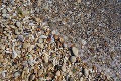 Färgrikt grus på kusten Arkivbilder