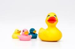 Färgrikt gummi duckar ungeleksaker Arkivfoto
