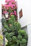 Färgrikt hörn i Frigiliana - spansk vit by Andalusia Arkivfoto